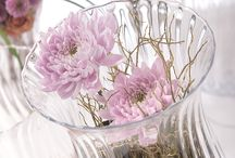 Disbud Inspiration / Disbudded Chrysanthemums