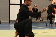 Pencak Silat / Fightsport