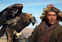 Photos by Cristina Lucaferri Mongolia / Travel Photo Mongolia