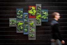 Garden Ideas / Cool garden ideas