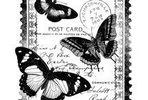 Imagens para transferência em preto e branco
