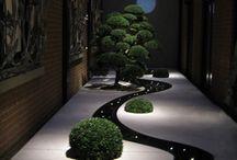 ligth garden