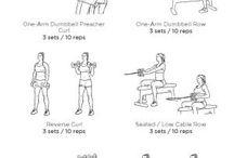 baksida/biceps