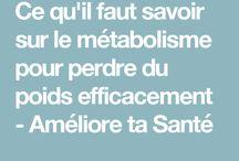 poids et métabolisme