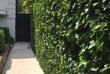 Moodboard tuin Goes-Zuid