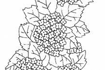 Rysunek- wzory