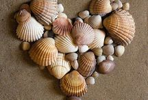 DIY - Seashell Art