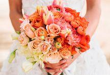 flores matri