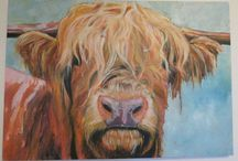 Paintings / Looking for a highland cow