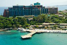 Kıbrıs Turları / Kıbrıs otelleri içerisinde yer alan Kıbrıs turları siz değerli kullanıcılarımız için sitemizde yer almakta. Kıbrıs turları konusunda bir rehber olarak Tatil Dükkanı'nı istediğiniz gibi kullanabilirsiniz.