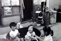 한국20세기