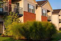 Louisvile Apartments for rent / The Best Apartments to rent in Louisville, KY!