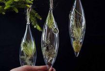 Eco Friendly Holiday Decor Ideas