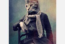 Pets To Go Stuff / by Angel Munoz-Epstein