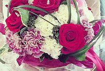 Daily Decor Spb / Studio of decor and floristic