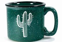 Cactus mania!