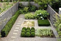 giardino luca