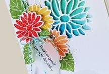 Special reason Stampin up