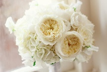 Modern White Simplistic Wedding Flowers