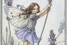 Flower Fairies 2