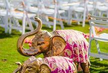 Wedding Decor! / A fabulous wedding isn't fabulous without the right decor.