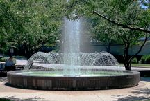 Water Features / A water feature in your outdoor space adds movement and sound to engage all the senses.