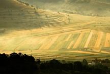 intihna.ro - Natură / Aici găsești aerul curat, cerul senin, bucuria de viață și verdele aprig din toată inima Ardealului. Bucură-te de natură pe intihna.ro.