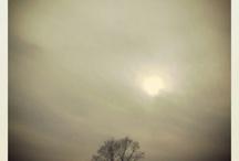 My photo-work