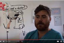 Viata de medic veterinar