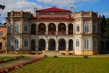 Tyczyn - Pałac / Pałac w Tyczynie  został wybudowany w latach 1862-1869 dla hrabiego Ludwika Wodzickiego i jego żony Jadwigi z Zamoyskich. Obecnie mieści się w nim Liceum Ogólnokształcące.  The palace in Tyczyn was built in 1862-1869 years for the count of Ludwik Wodzicki and his wife of Jadwiga from Zamoyskich. At present a comprehensive secondary school is located in it.
