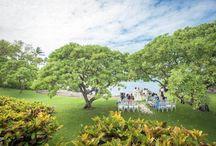 ダブルツリー・エステート / ハワイ・マウイ島「ダブルツリー・エステート」のウェディングボード。  マウイ島の歴史ある邸宅「ダブルツリー・エステート」。 この邸宅の庭園では、プライベートで健やかなガーデンセレモニーが叶います♪ 象徴的な2本のプルメリアの樹と、目の前に広がるオーシャンブルーが最高の演出に。