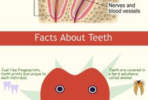 Cool dental facts!