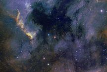 Space / by Sue Holecek