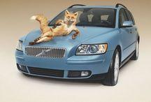Car Creative Ads