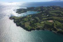 Waiheke island / Travel