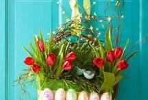 Spring / by Cynthia Sansone Almeida