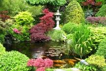 Yard, Garden & Beyond / Flower Beds, Ponds, Sheds, Spaces, Decor, Tips...... / by Karen