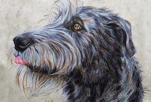 Irish Wolfhound, watercolor / Dog art by Tanja Kooymans