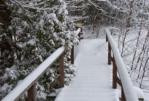 Winter / by Explore Minnesota