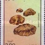 Francobolli funghi