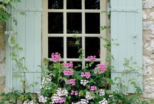 containers & window boxes