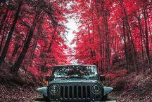 Jeep ⛺