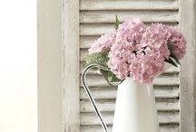 """Summer Trends for 2014 !!! / All things """"Home"""", so many awesome ideas !!!  Get excited for the summer months! :)   Keep in mind, we have one of the best decorators in the HRM ;)--> Meg Wallace, who can help you re-vamp your home and get it summer ready, or whatever your heart desires !!"""