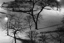 Photographer - André Kertesz