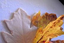 Jesien/Autumn