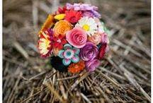 Wedding / Decoratiuni de nunta