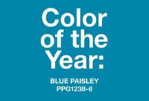 Blue Paisley, 2015 Paint Color of the Year / An Enthusiastic Hue for a Hopeful Outlook : We anticipate our 2015 Color of the Year to play a prominent role in the home décor trends for the coming year as homeowners look to positively influence their lives and decisions with vibrant colors. With its bohemian flare and global ties, Blue Paisley can be paired with a charming, rich yellow-gold, or used as an accent wall, pulling in some mystery with black, gray and white. / by PPG Voice of Color