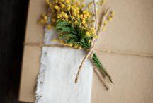 Dicas & Tips - Embalagens & Box & Packaging