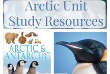1 arctic
