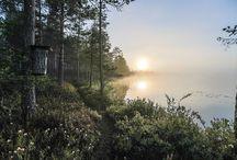 Pekka Hatunen kuvat